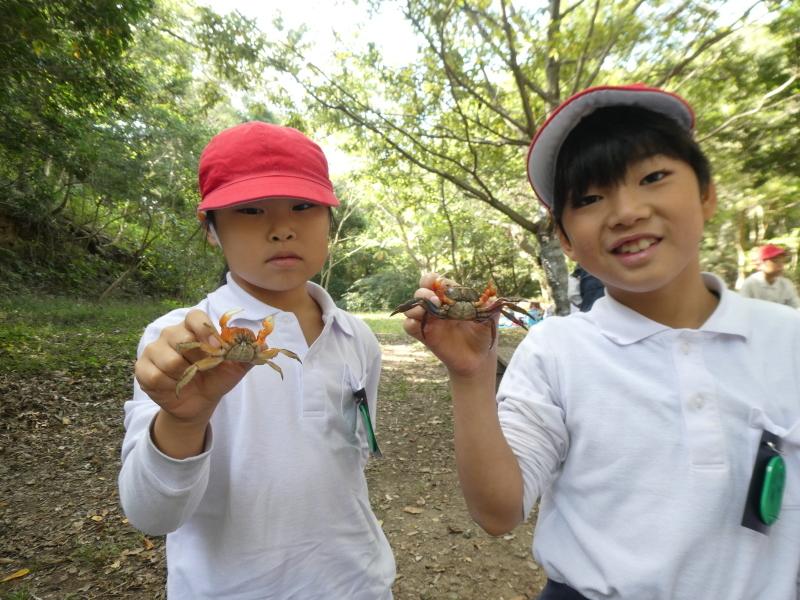 鳴滝小学校2年生遠足のサポート・・・うみべの森_c0108460_17251154.jpg