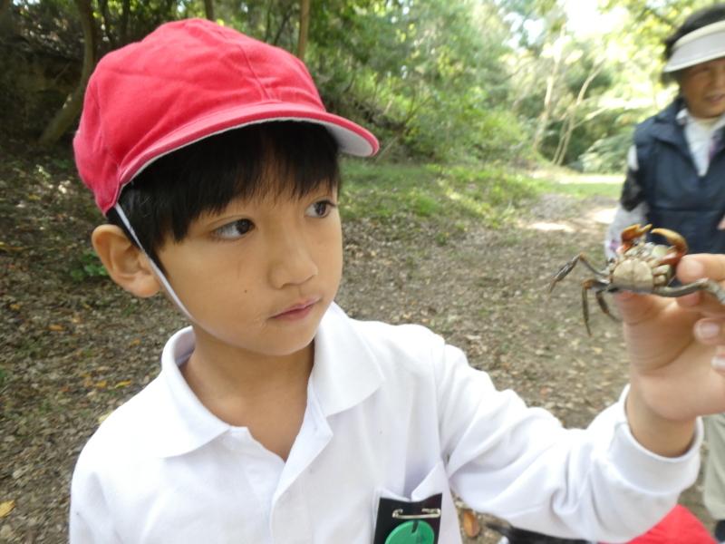 鳴滝小学校2年生遠足のサポート・・・うみべの森_c0108460_17252933.jpg