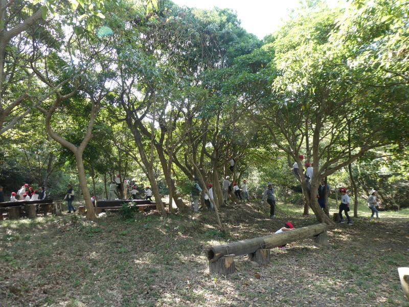 鳴滝小学校2年生遠足のサポート・・・うみべの森_c0108460_17291275.jpg