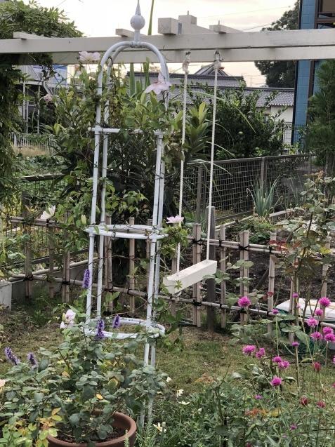 10月の庭「メインガーデンの様子」_a0243064_17315820.jpg