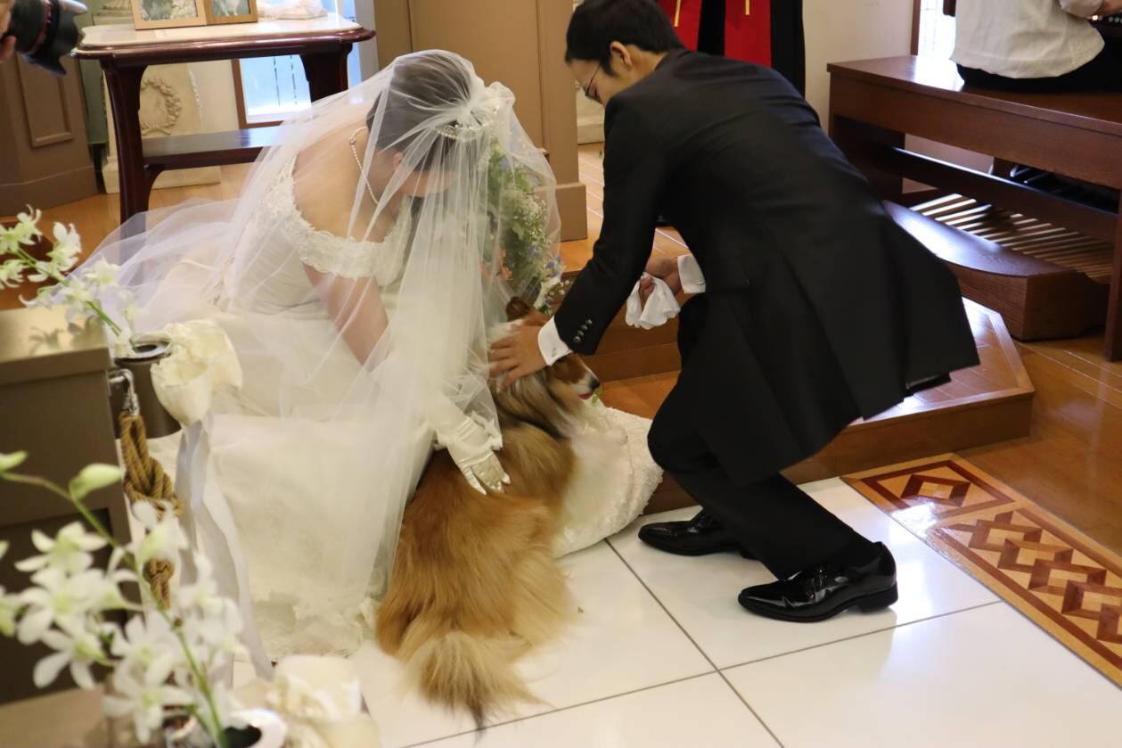 Aさんご結婚おめでとうございます_f0126965_05290561.jpg