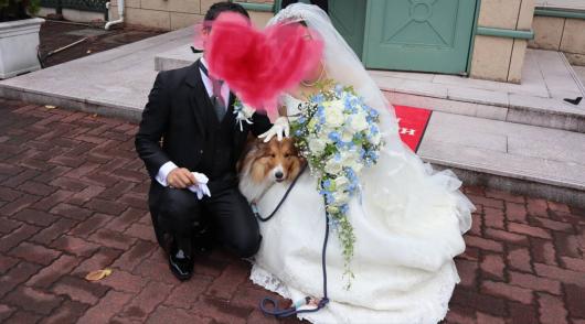 Aさんご結婚おめでとうございます_f0126965_05290729.jpg