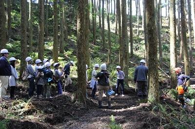 森林ツアーのごあんない。_b0112371_18010679.jpg