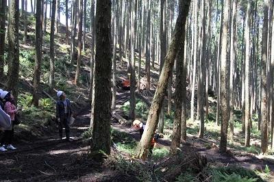 森林ツアーのごあんない。_b0112371_18065077.jpg