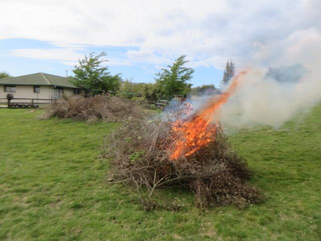 焚き火と南十字星_e0133780_17312420.jpg