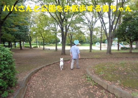 f0121712_08491252.jpg