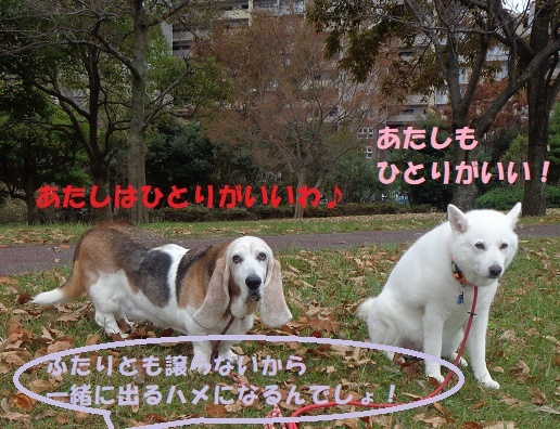 f0121712_23421474.jpg