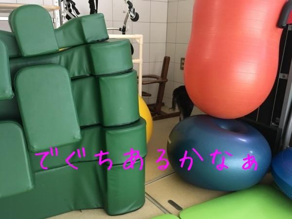 f0369014_13214538.jpg