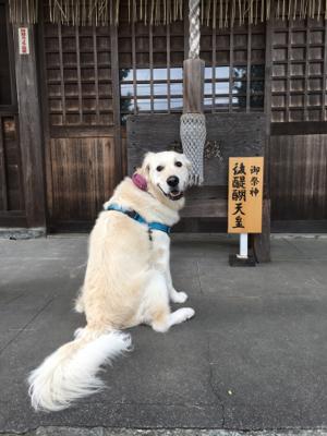 お散歩_e0293553_11590815.jpg