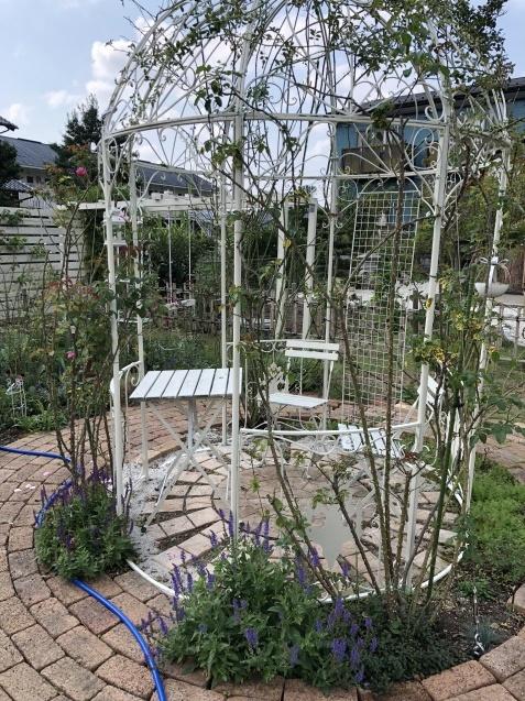 10月の庭「メインガーデンの様子」_a0243064_16332363.jpg