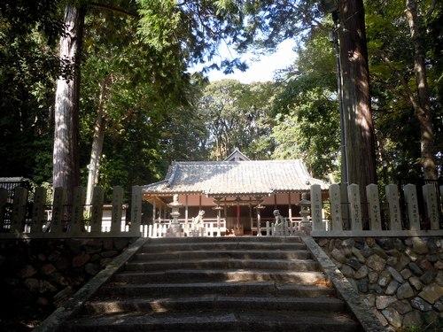 路傍の花、樹々の鳥(228) ~ 延喜式内神社へと続く小道を歩く ~ _b0102572_1656233.jpg