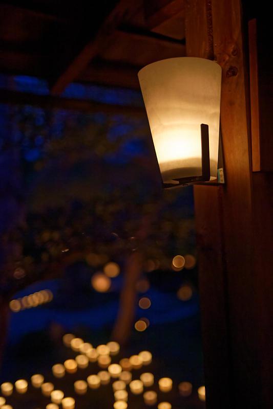 梵燈のあかりに親しむ会@東林院_f0032011_15335017.jpg