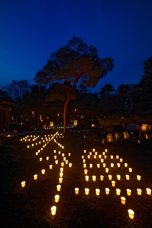 梵燈のあかりに親しむ会@東林院_f0032011_15335023.jpg