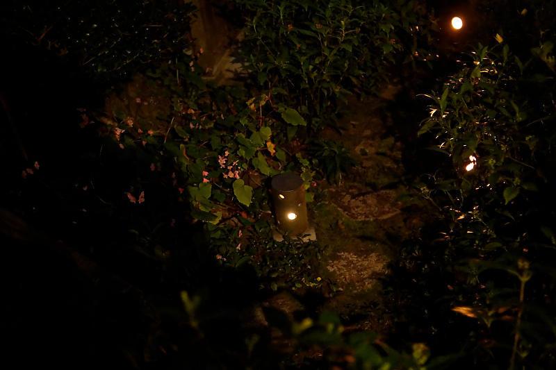 梵燈のあかりに親しむ会@東林院_f0032011_15384757.jpg