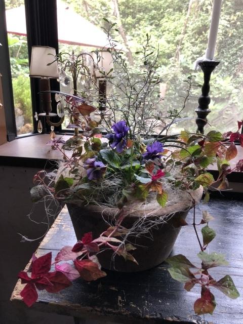 秋の感謝祭_d0179912_21381070.jpeg