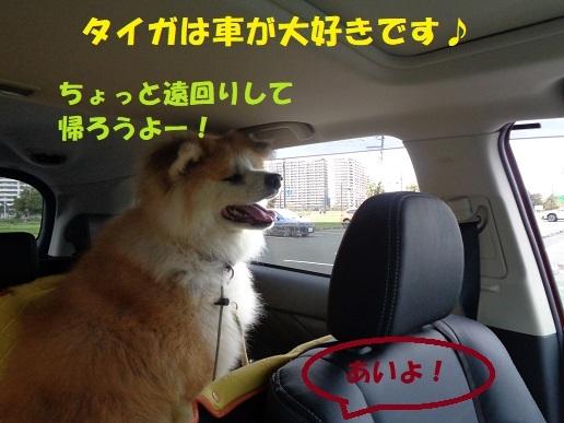 f0121712_00110669.jpg