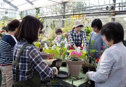 実りの秋を楽しむ寄せ植え_f0139333_23534622.jpg