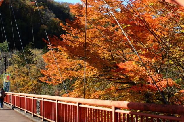 夕張・滝ノ上公園ほかの紅葉_c0360399_22324674.jpg