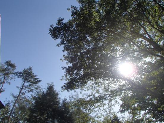 雲一つない秋晴れ!_f0064906_16211579.jpg