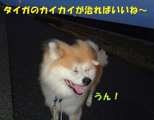 f0121712_14352841.jpg