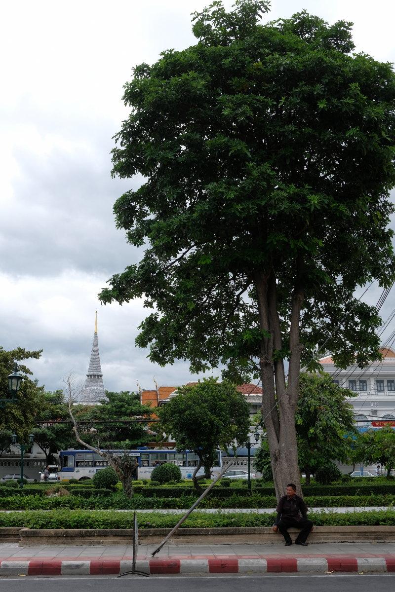 バンコク  FAZAL BUILDING界隈_b0061717_1038252.jpg