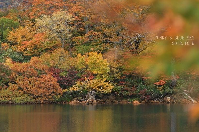 秋の湖畔・Ⅱ_c0145250_09464833.jpg