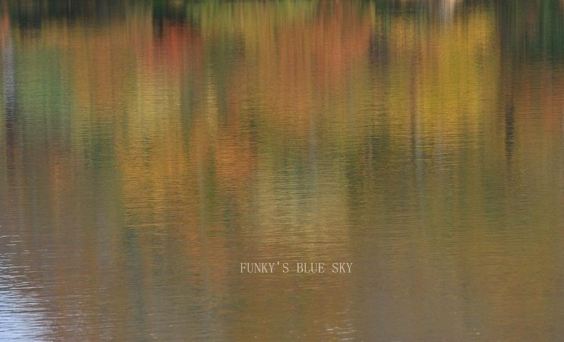 秋の湖畔・Ⅱ_c0145250_09465508.jpg