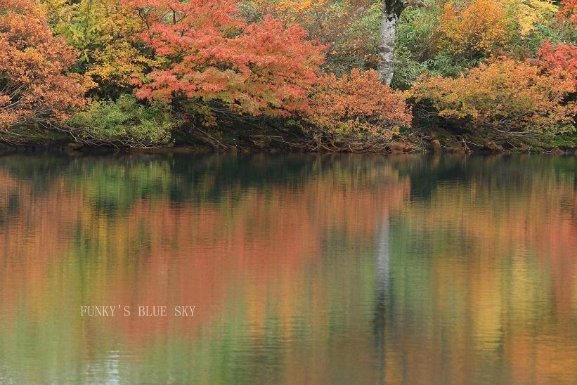 秋の湖畔・Ⅱ_c0145250_09470138.jpg
