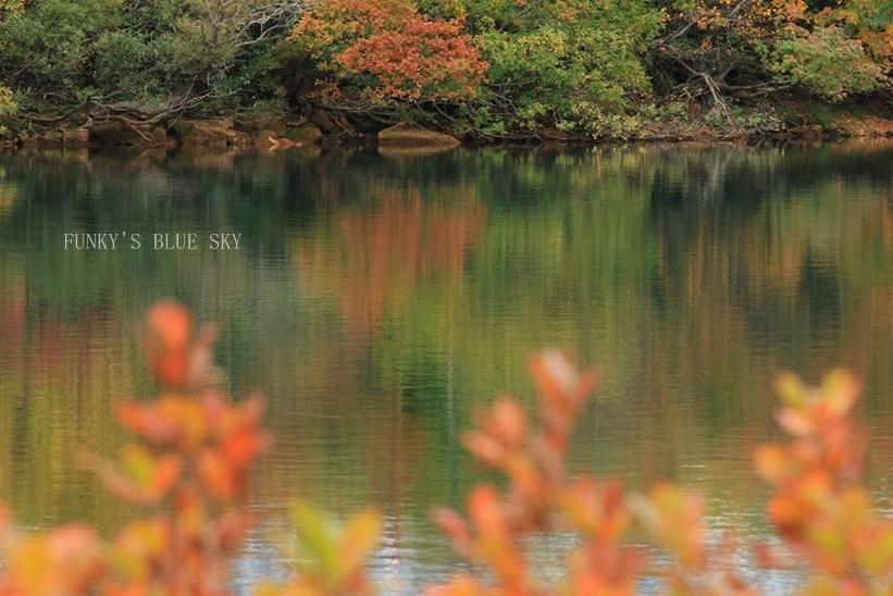 秋の湖畔・Ⅱ_c0145250_09470435.jpg