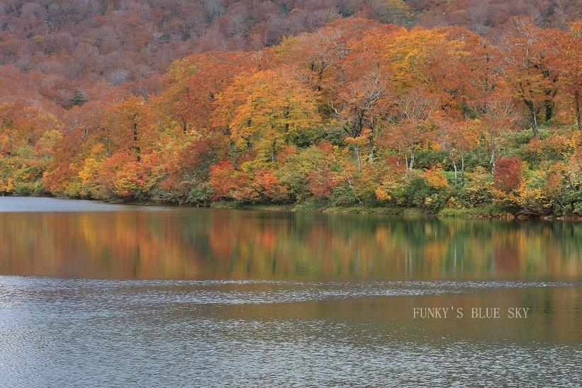秋の湖畔・Ⅱ_c0145250_09470752.jpg