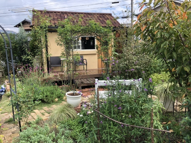 10月の庭「ガーデンハウス辺りの様子」_a0243064_08201156.jpg