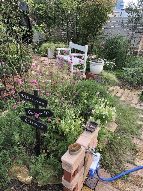 10月の庭「ガーデンハウス辺りの様子」_a0243064_08214424.jpg