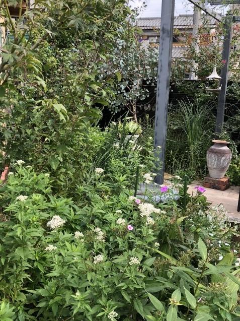 10月の庭「ガーデンハウス辺りの様子」_a0243064_08235819.jpg