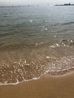 秋の海_f0202682_11535932.jpg