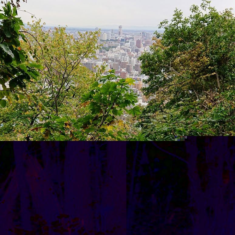 円山公園散策というか円山登山?_e0167593_23414642.jpg