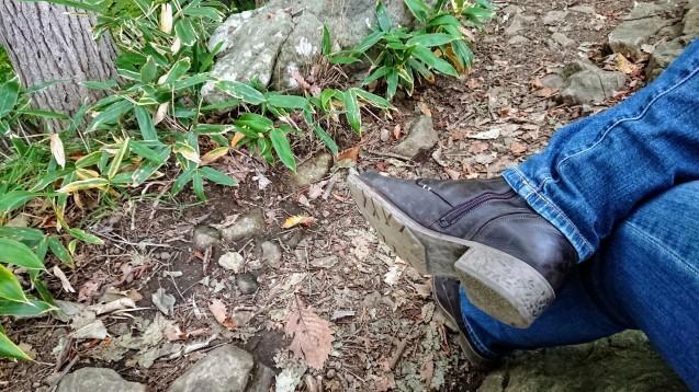 円山公園散策というか円山登山?_e0167593_23430967.jpg