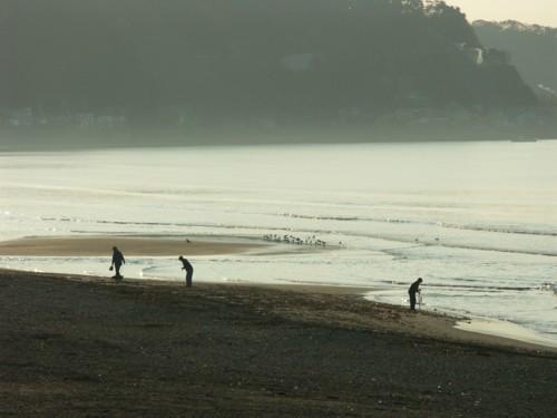朝靄に霞む浜辺_f0055131_12015226.jpg