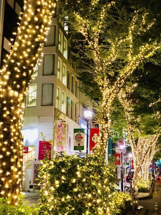 美味しい秋タコスと赤坂SON四郎_a0103940_07465795.jpeg