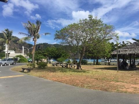 小笠原諸島への旅①_f0233340_13254462.jpg