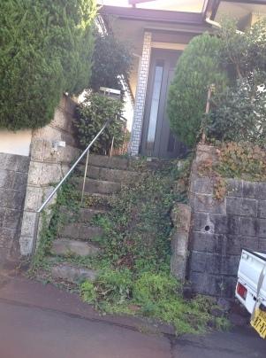庭手入れ_c0186441_17242026.jpg