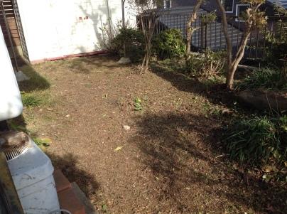庭手入れ_c0186441_17375075.jpg