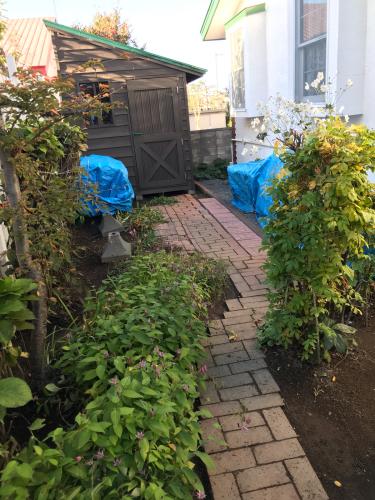 終わったお庭の冬囲いとアナベルでのリース作り_a0279743_20014439.jpg