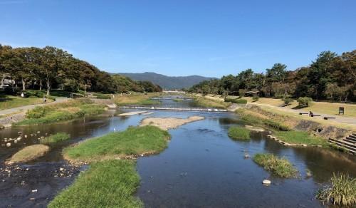10月22日 子どもたちと加茂川沿いを歩く_a0023466_20574855.jpg