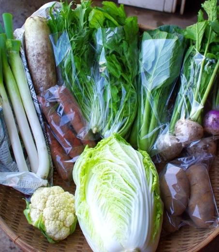 今週の野菜セット(10/23~10/27着)_c0110869_12155055.jpg