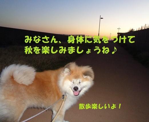 f0121712_08451200.jpg