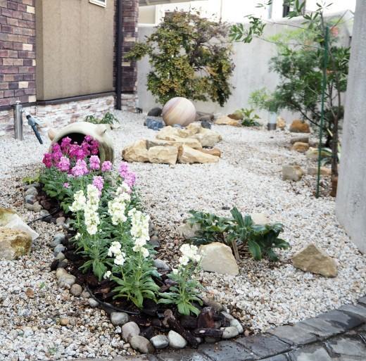 冬を彩る花壇、コンテナの植栽開始!_f0139333_21345286.jpg