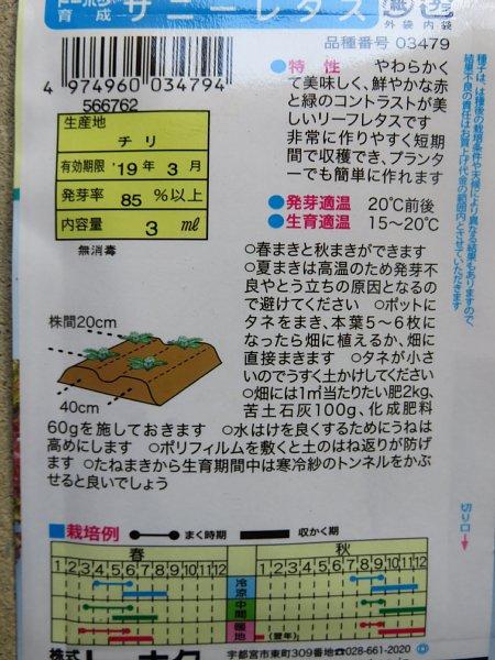 2018年10月27日 サニーレタスの種まき!(^^)!_b0341140_18521138.jpg