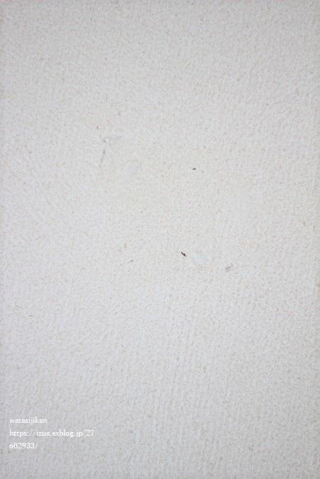 目隠しシートのその後とクロスの穴埋め材_e0214646_13430453.jpg