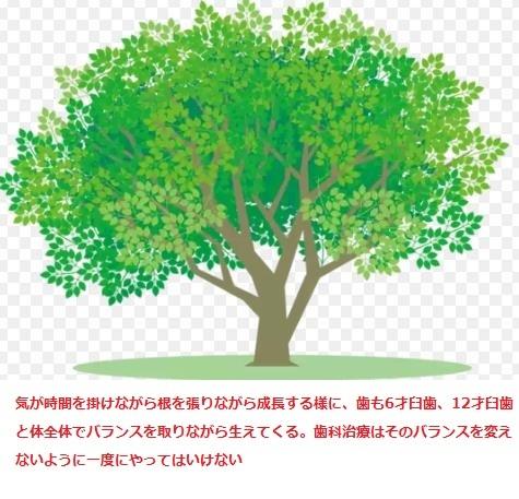 d0338857_03361873.jpg