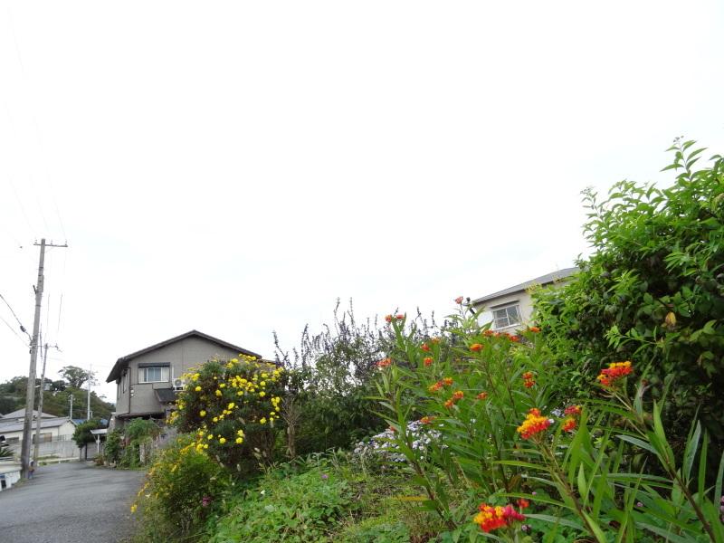 雨/閑_c0108460_16304825.jpg